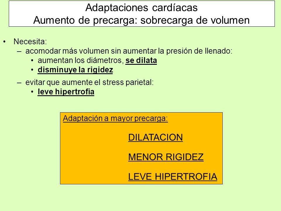 Adaptaciones cardíacas Aumento de precarga: sobrecarga de volumen