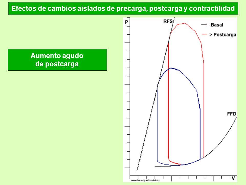 Efectos de cambios aislados de precarga, postcarga y contractilidad