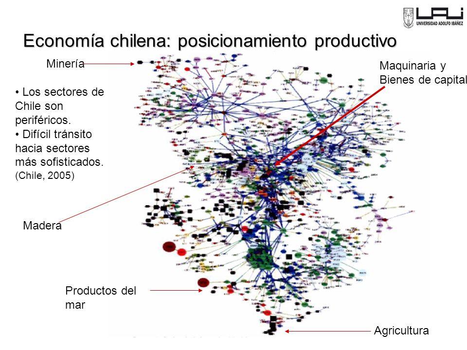 Economía chilena: posicionamiento productivo