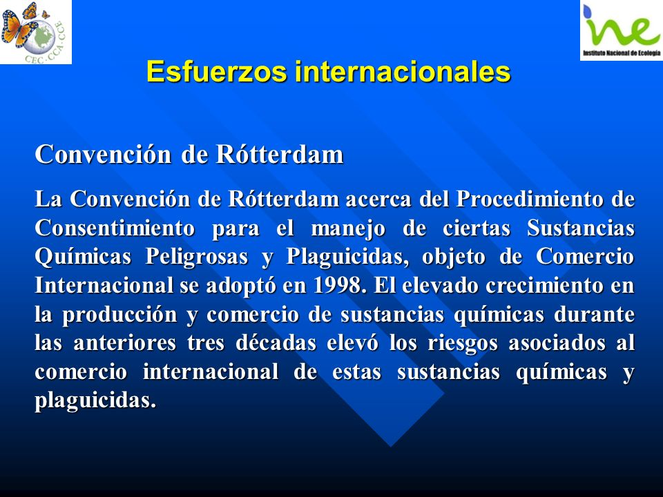 Esfuerzos internacionales