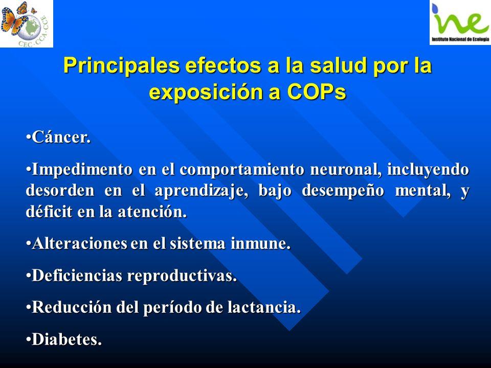 Principales efectos a la salud por la exposición a COPs