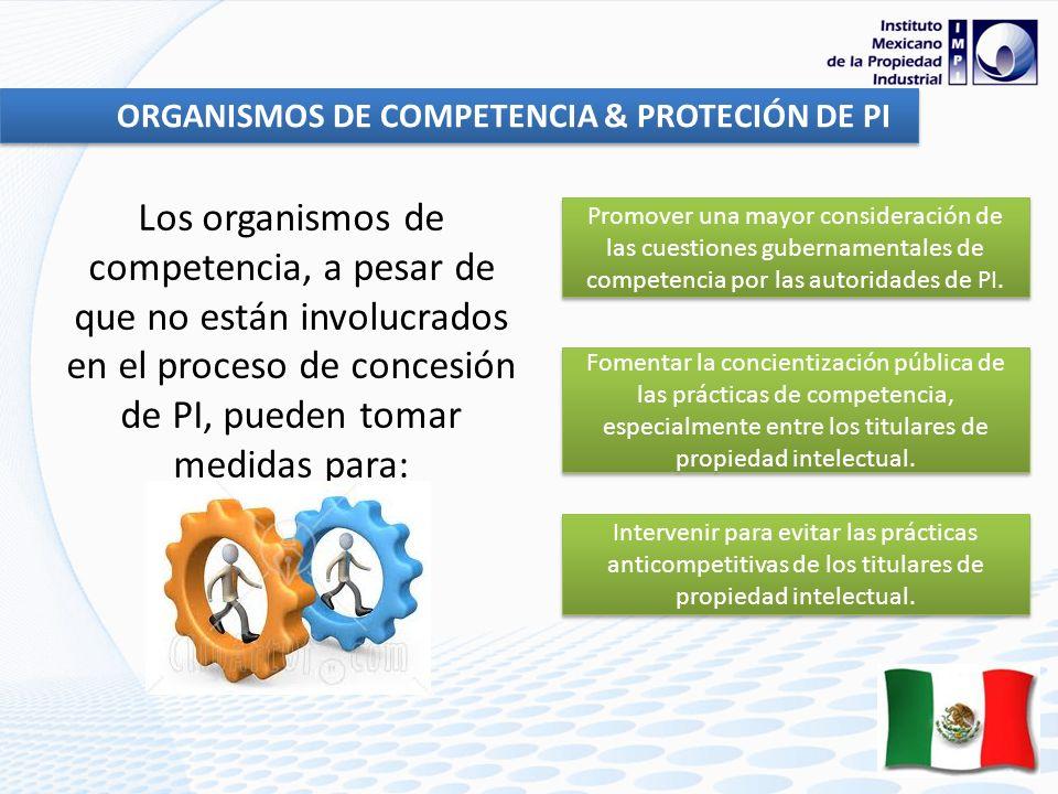 ORGANISMOS DE COMPETENCIA & PROTECIÓN DE PI