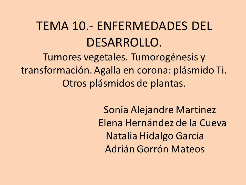 TEMA 10. - ENFERMEDADES DEL DESARROLLO. Tumores vegetales