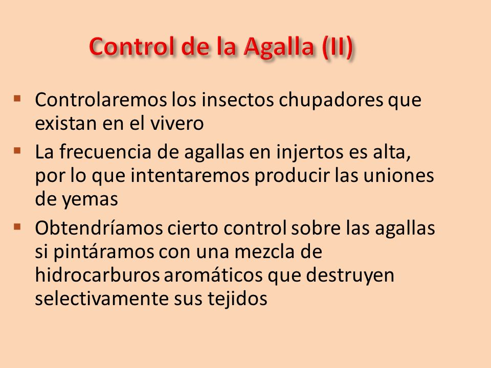 Control de la Agalla (II)