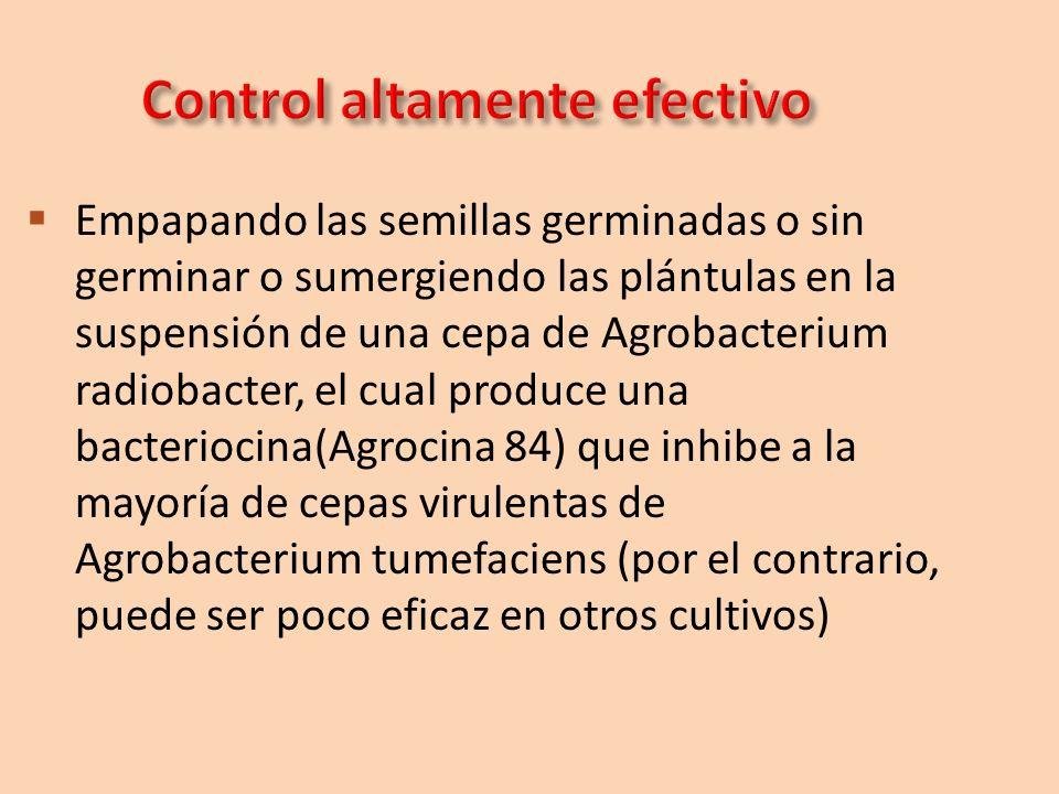 Control altamente efectivo
