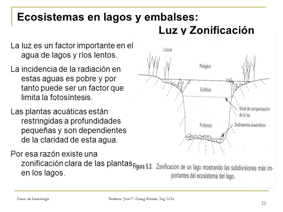 Ecosistemas en lagos y embalses: Luz y Zonificación