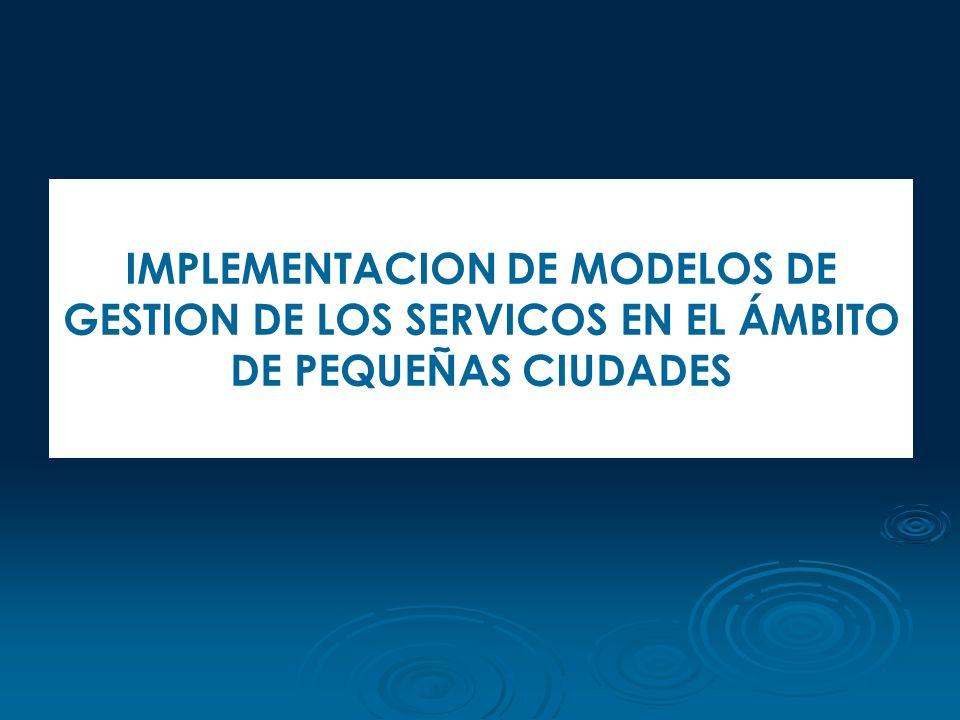 IMPLEMENTACION DE MODELOS DE GESTION DE LOS SERVICOS EN EL ÁMBITO DE PEQUEÑAS CIUDADES