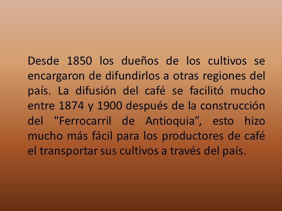Desde 1850 los dueños de los cultivos se encargaron de difundirlos a otras regiones del país.