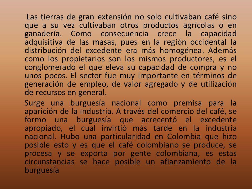 Las tierras de gran extensión no solo cultivaban café sino que a su vez cultivaban otros productos agrícolas o en ganadería.
