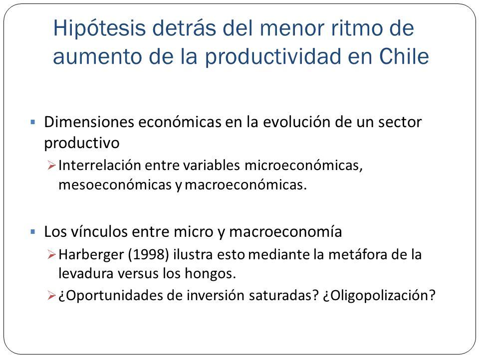 Hipótesis detrás del menor ritmo de aumento de la productividad en Chile