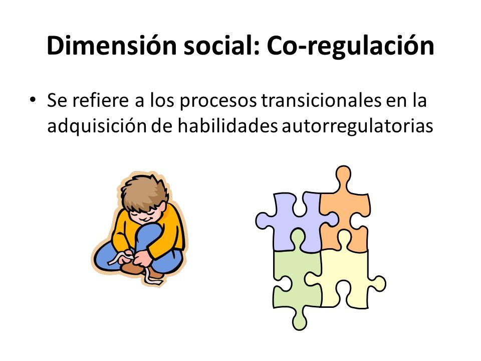 Dimensión social: Co-regulación