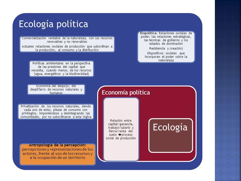 Ecología política Comercialización rentable de la naturaleza, con sus recursos renovables y no renovables.