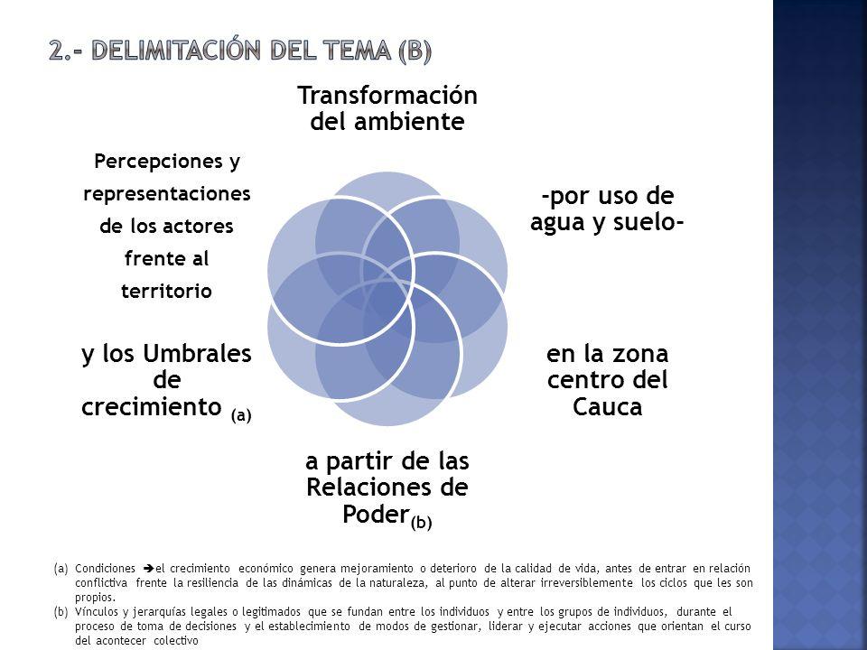 2.- Delimitación del tema (b)