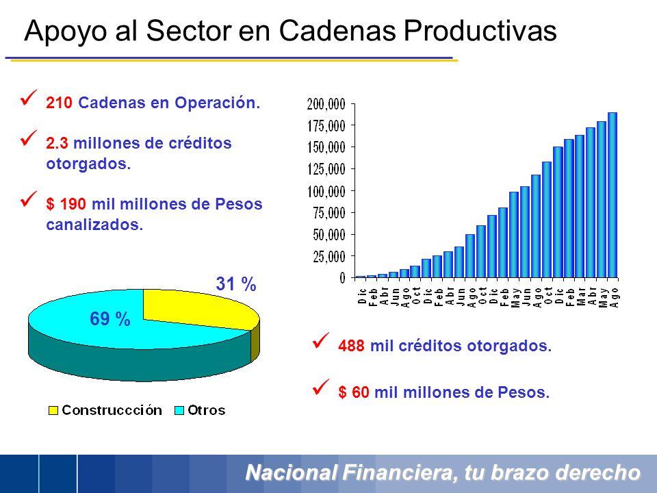 Apoyo al Sector en Cadenas Productivas