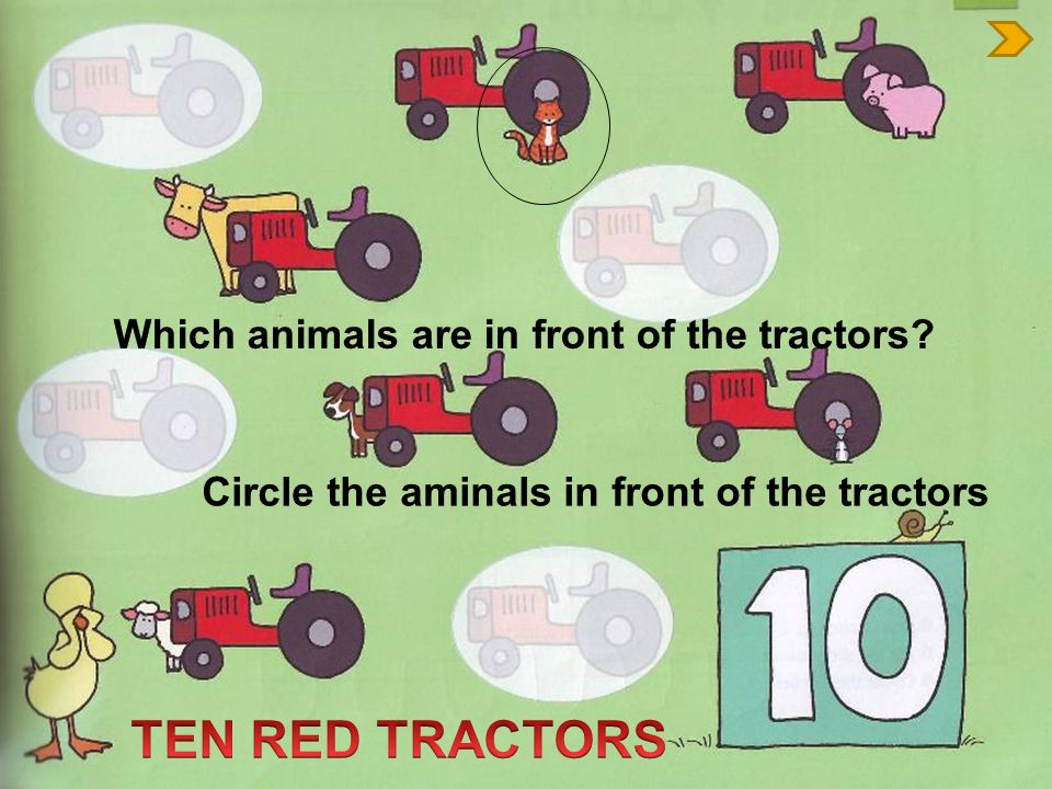 TEN RED TRACTORS Which animals are in front of the tractors