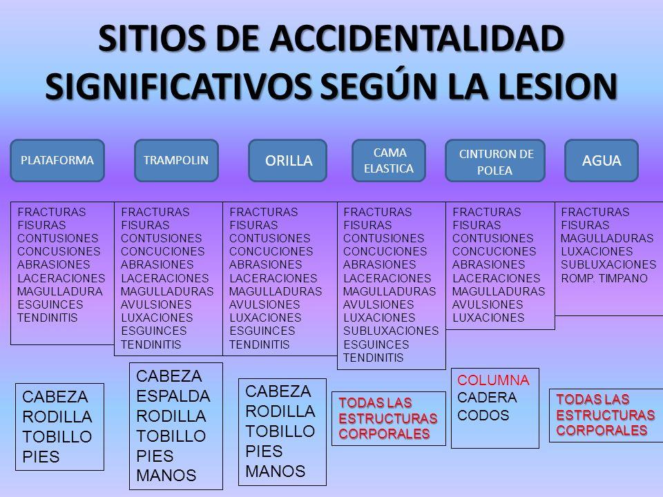 SITIOS DE ACCIDENTALIDAD SIGNIFICATIVOS SEGÚN LA LESION