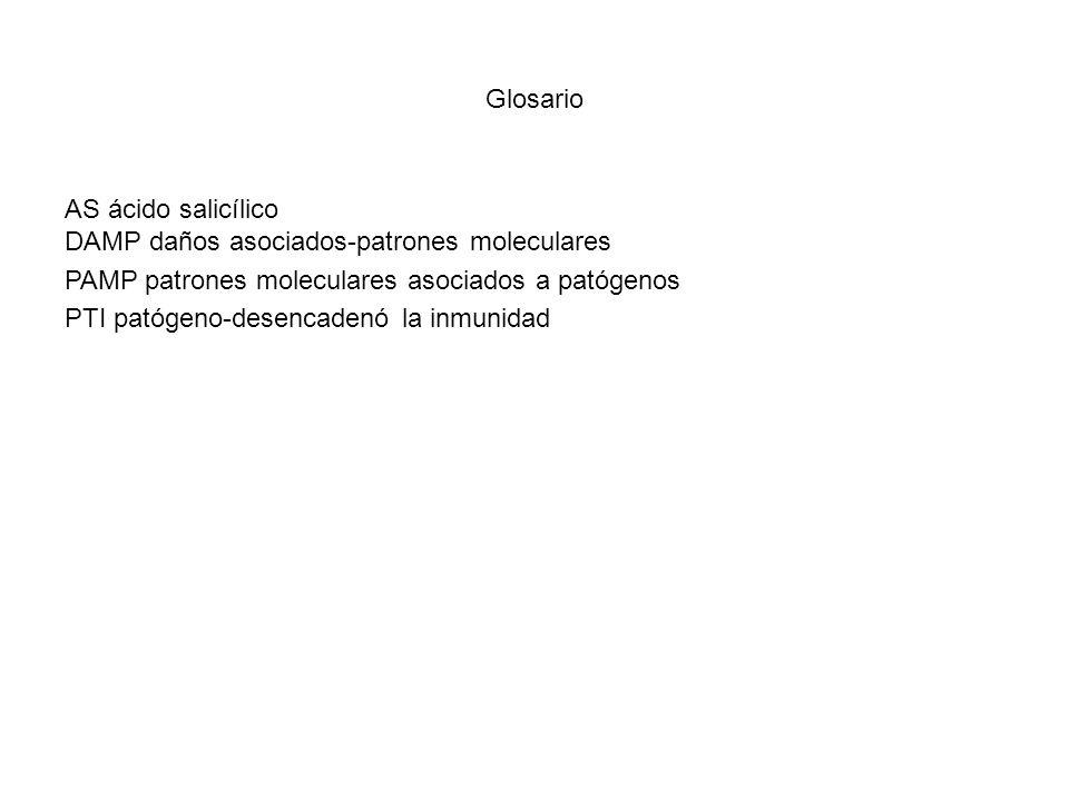 Glosario AS ácido salicílico. DAMP daños asociados-patrones moleculares. PAMP patrones moleculares asociados a patógenos.