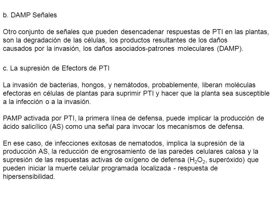 b. DAMP Señales