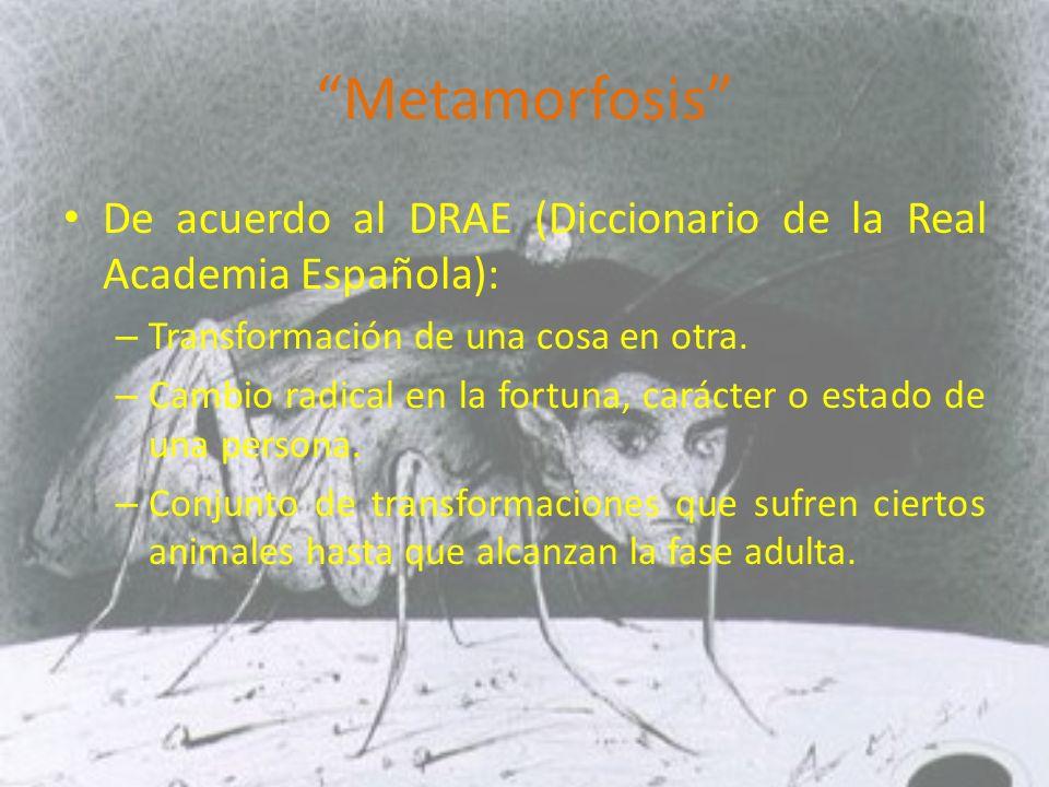 Metamorfosis De acuerdo al DRAE (Diccionario de la Real Academia Española): Transformación de una cosa en otra.