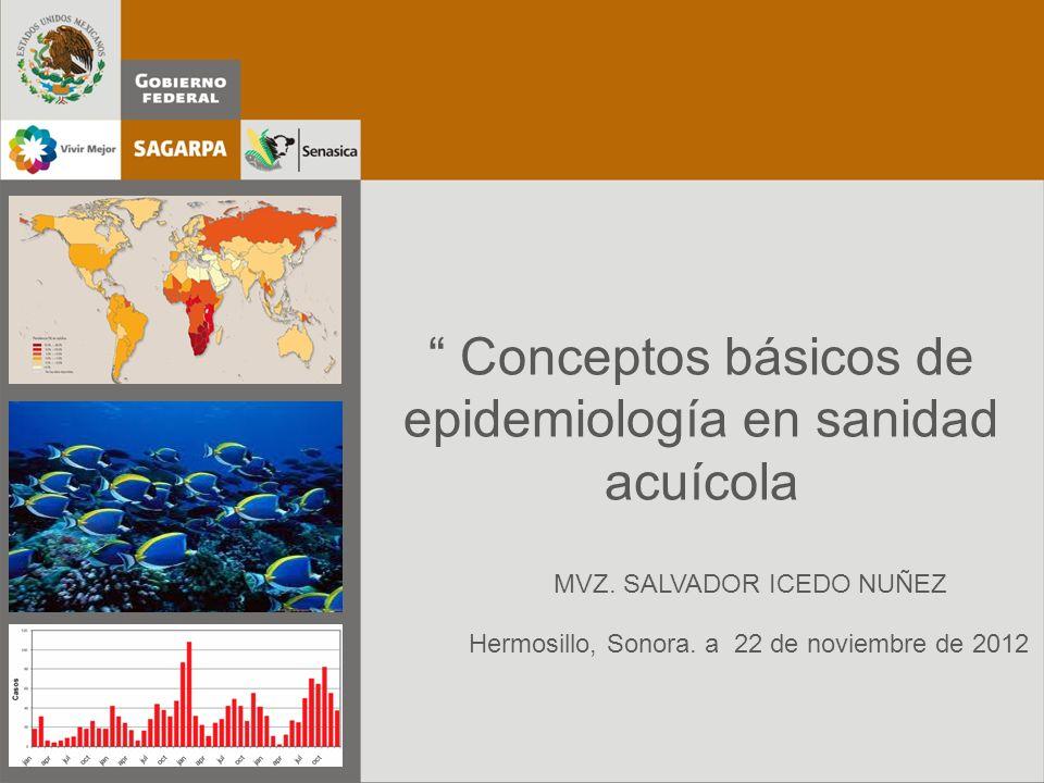 Conceptos básicos de epidemiología en sanidad acuícola