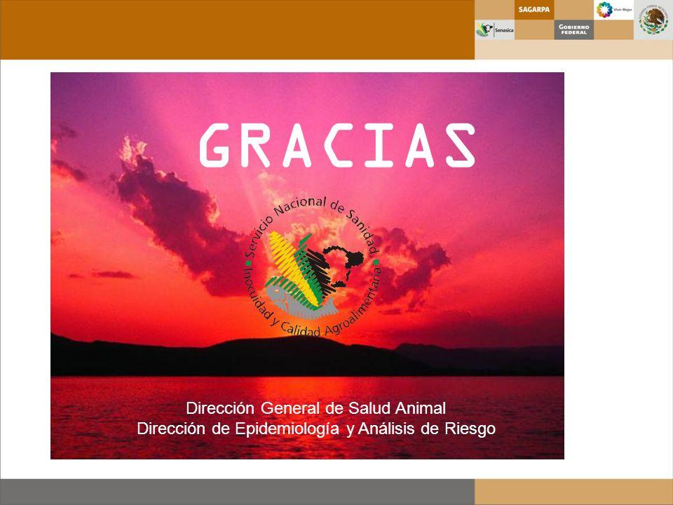 GRACIAS Dirección General de Salud Animal
