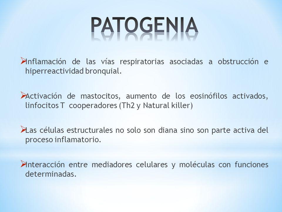 PATOGENIA Inflamación de las vías respiratorias asociadas a obstrucción e hiperreactividad bronquial.