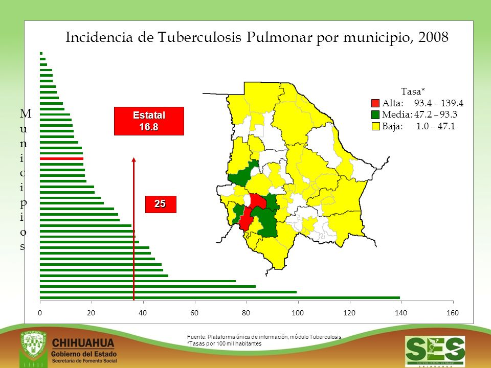 Incidencia de Tuberculosis Pulmonar por municipio, 2008