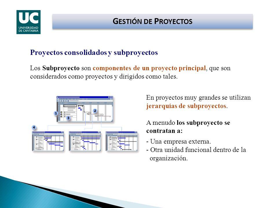 GESTIÓN DE PROYECTOS Proyectos consolidados y subproyectos