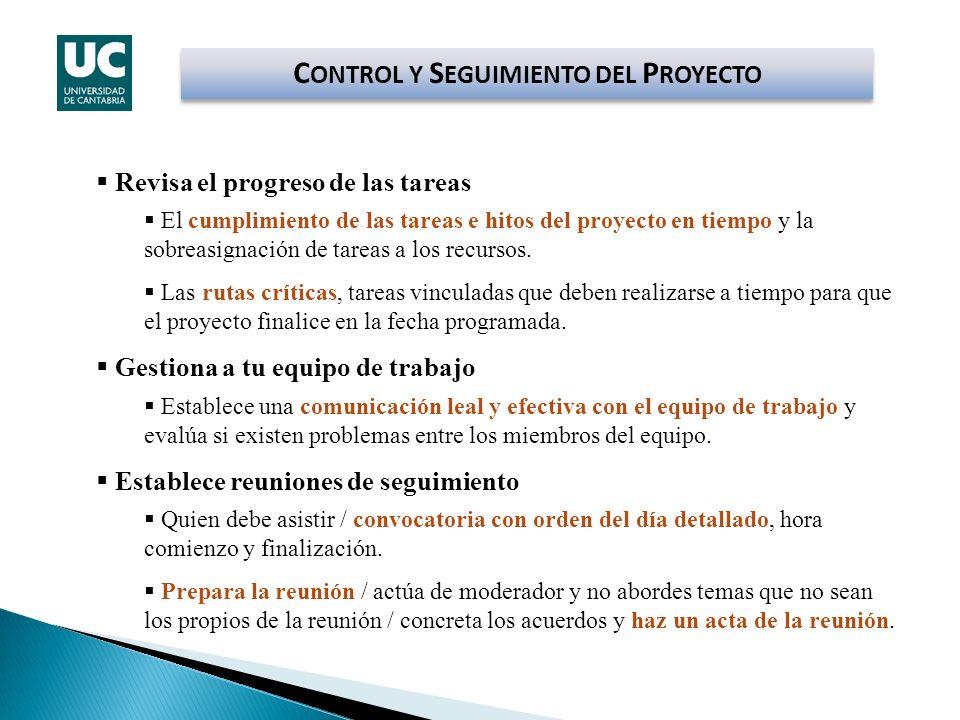 CONTROL Y SEGUIMIENTO DEL PROYECTO