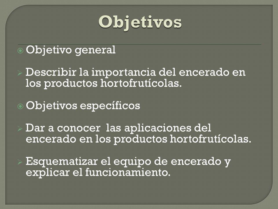 Objetivos Objetivo general
