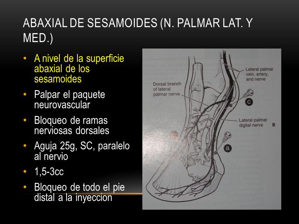 Abaxial de sesamoides (N. palmar lat. y med.)