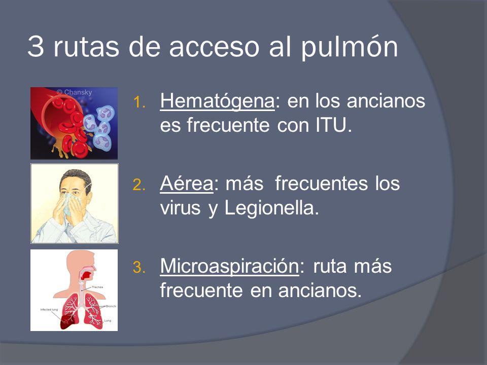 3 rutas de acceso al pulmón