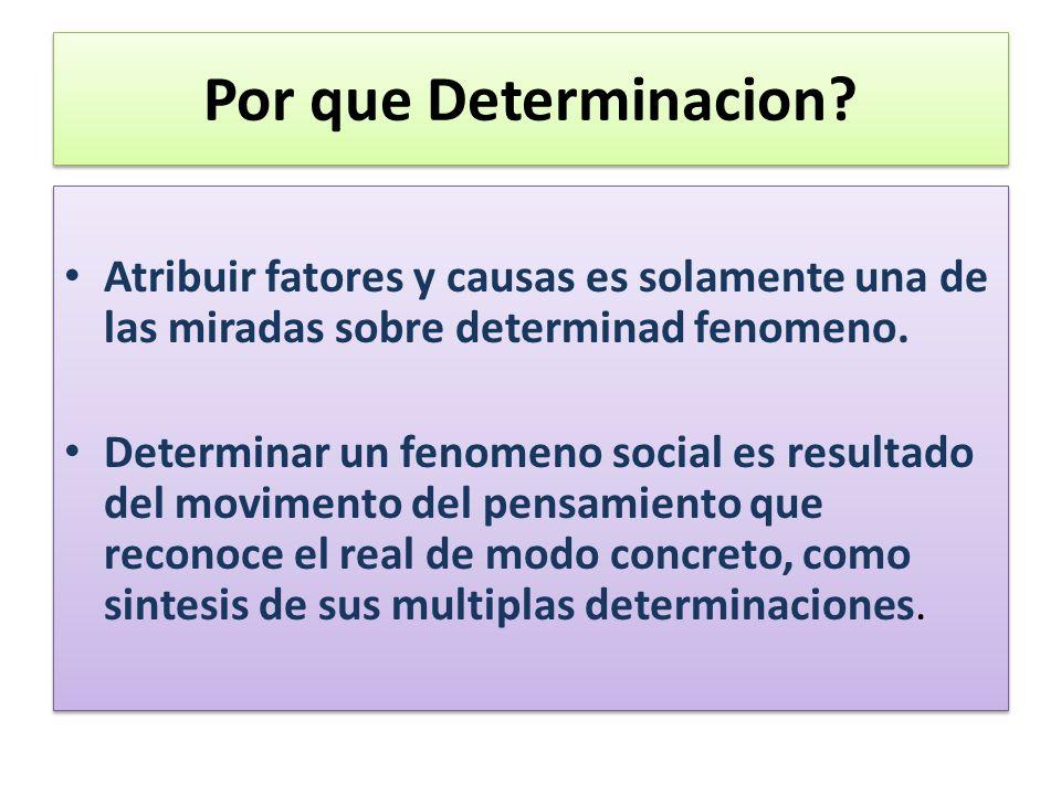 Por que Determinacion Atribuir fatores y causas es solamente una de las miradas sobre determinad fenomeno.