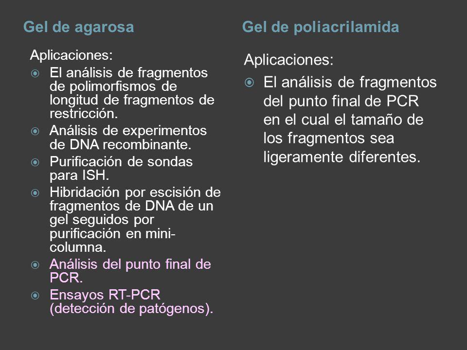 Gel de agarosa Gel de poliacrilamida Aplicaciones: