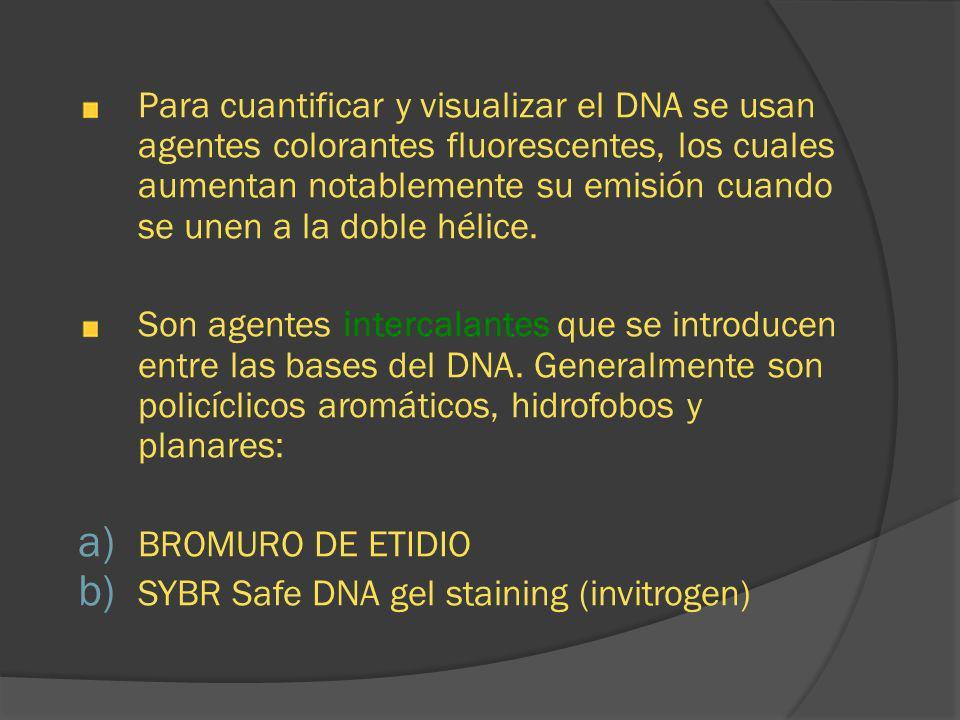 Para cuantificar y visualizar el DNA se usan agentes colorantes fluorescentes, los cuales aumentan notablemente su emisión cuando se unen a la doble hélice.