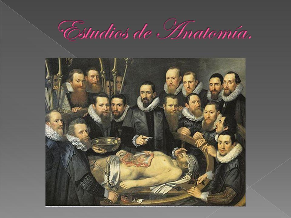 Estudios de Anatomía.