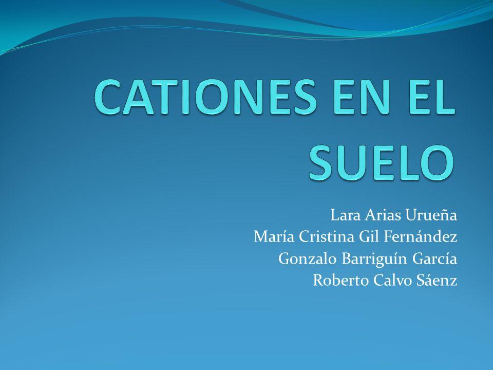 CATIONES EN EL SUELO Lara Arias Urueña María Cristina Gil Fernández
