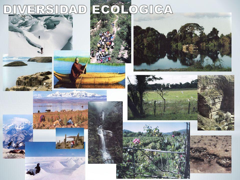 DIVERSIDAD ECOLOGICA