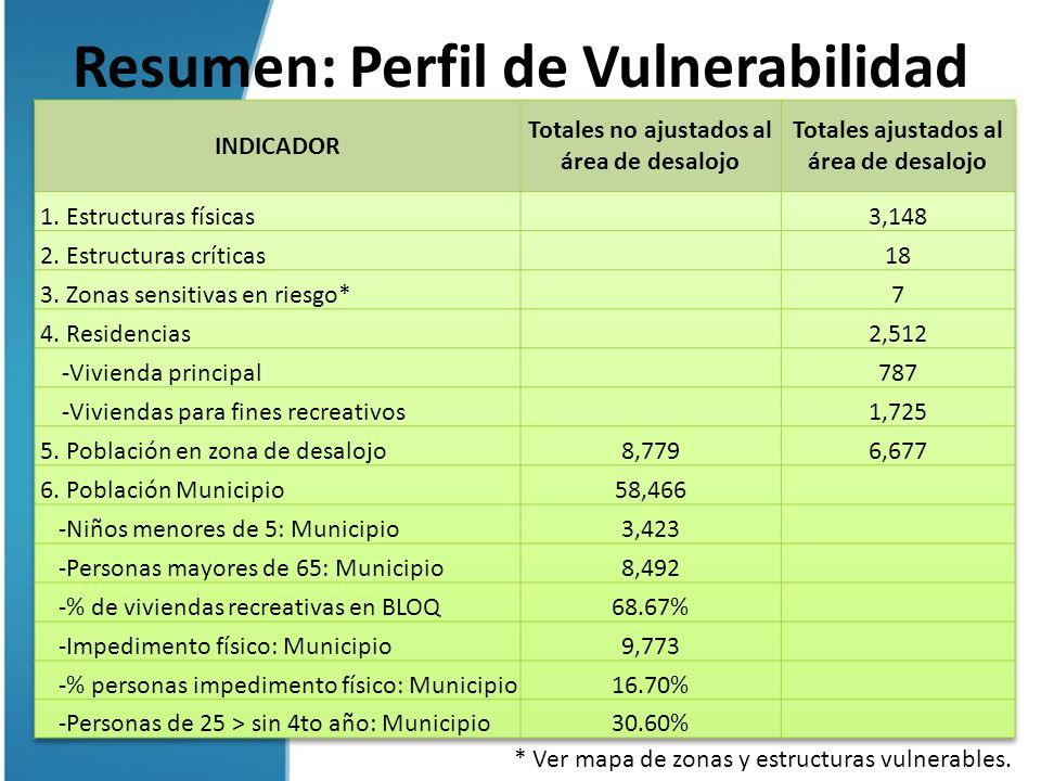 Resumen: Perfil de Vulnerabilidad