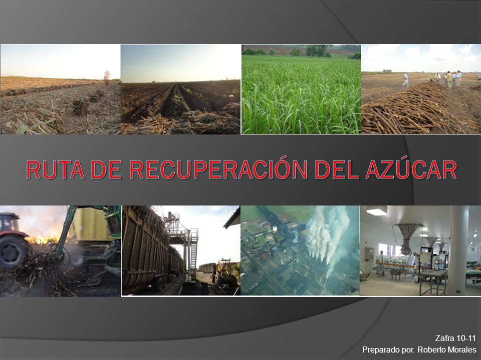 RUTA DE RECUPERACIÓN DEL AZÚCAR