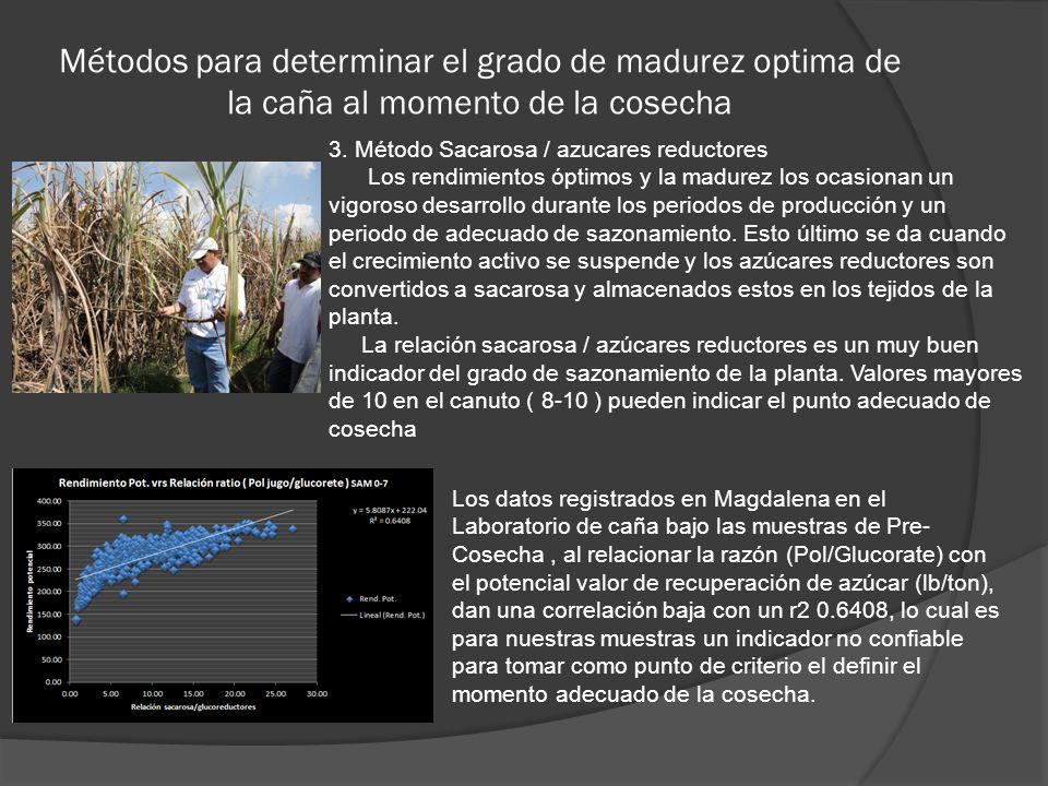 Métodos para determinar el grado de madurez optima de la caña al momento de la cosecha