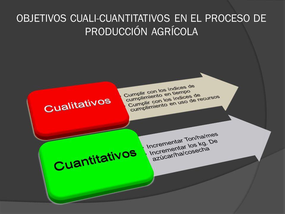 OBJETIVOS CUALI-CUANTITATIVOS EN EL PROCESO DE PRODUCCIÓN AGRÍCOLA
