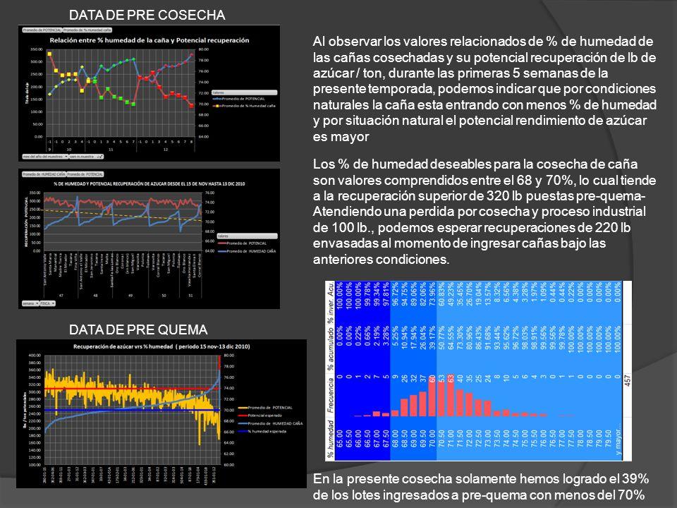 DATA DE PRE COSECHA