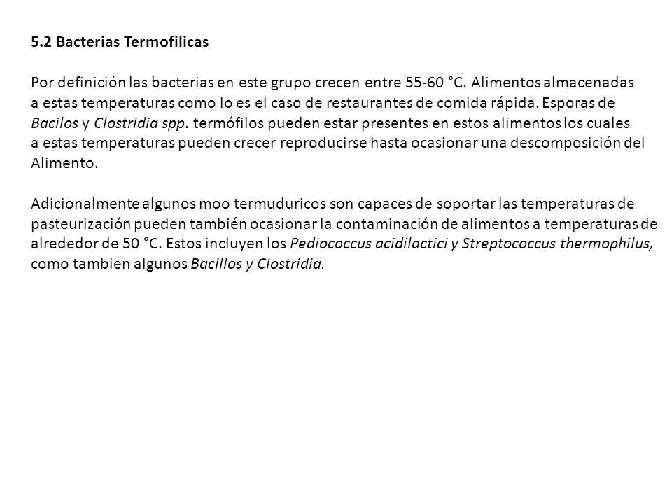 5.2 Bacterias Termofilicas