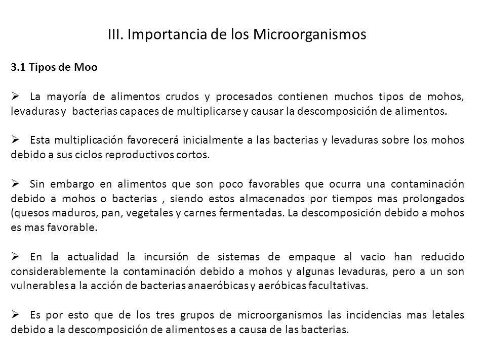 III. Importancia de los Microorganismos