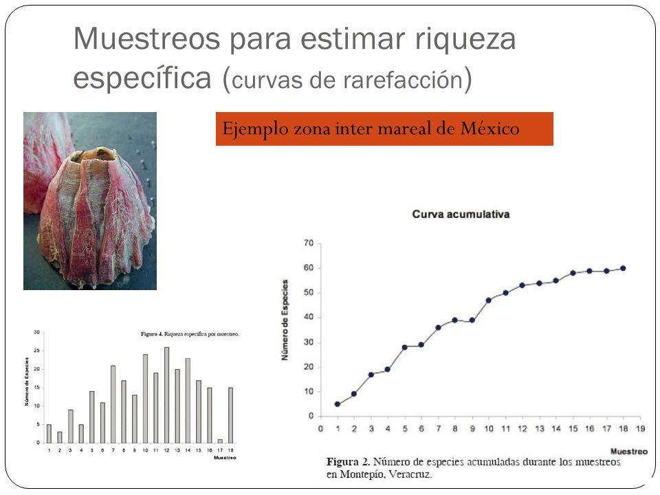 Muestreos para estimar riqueza específica (curvas de rarefacción)