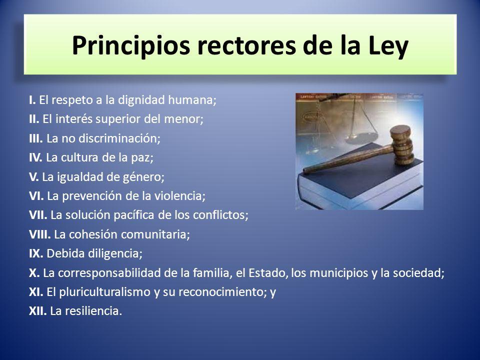 Principios rectores de la Ley
