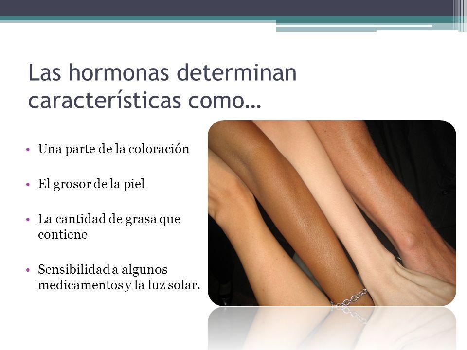 Las hormonas determinan características como…