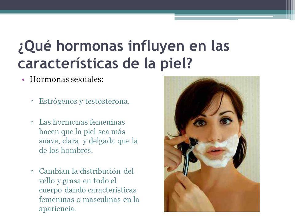 ¿Qué hormonas influyen en las características de la piel