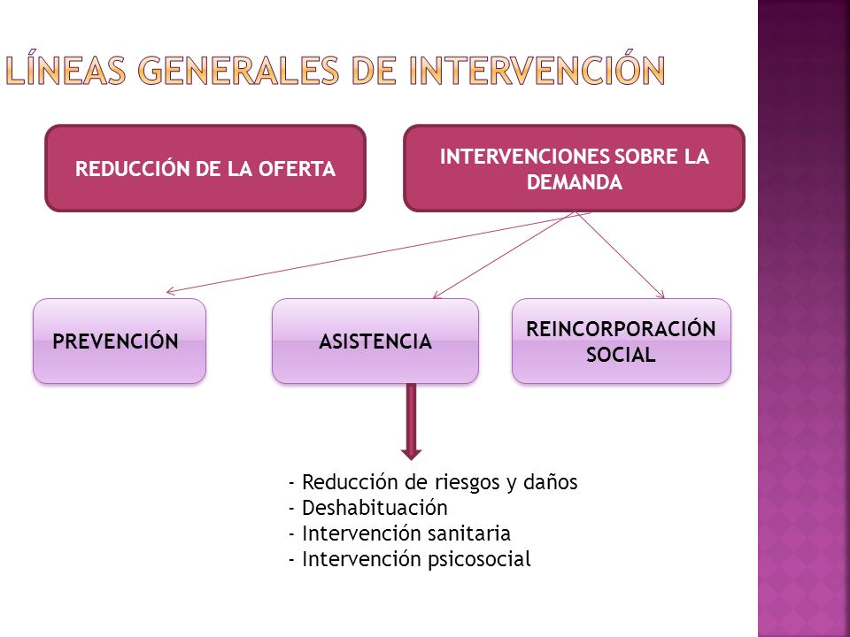 LÍNEAS GENERALES DE INTERVENCIÓN